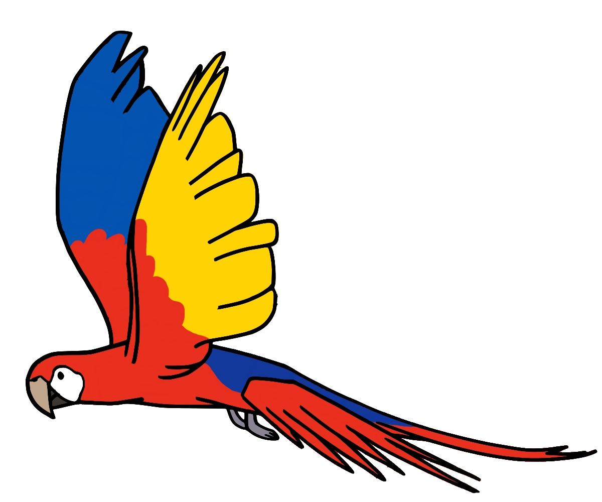 Tag wip croquis dessins et colorisations page 3 - Dessins de perroquets ...