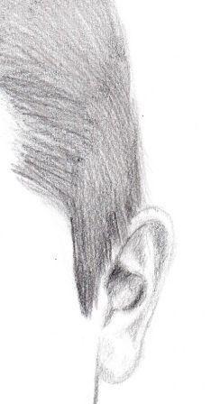dessin-portrait-homme_droite.jpg